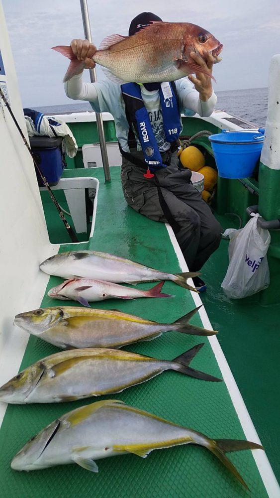 5月30日午後便シマアジの釣果